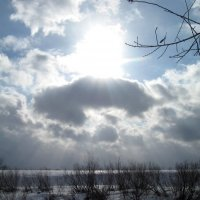 Весеннее солнце :: Вера Андреева
