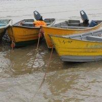 лодки :: Elena Соломенцева