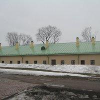 Оранжереи в Царицыно :: Джулия К.