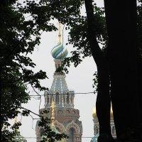 Свет в конце туннеля :: Сергей Трусов