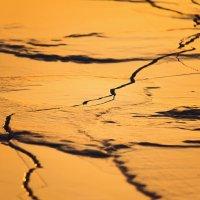 Лед и пламень :: Татьяна Губина