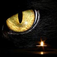 Взгляд из темноты :: Алексей Лугинин