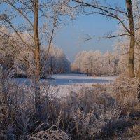 Зимний пейзаж. :: Алексей Жуков