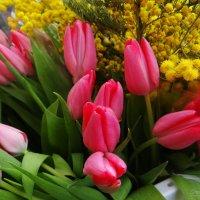 Тюльпаны. :: Антонина Гугаева
