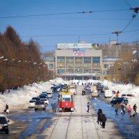 Запахло весной... :: Сергей Щелкунов