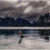 Релакс по таЙски...Национальный Парк Као Сок  и озеро Чеолан... :: Александр Вивчарик