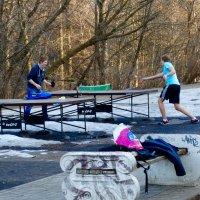 Летний спортивный сезон открыт :: Svetlana27
