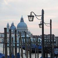 Венецианская парковка :: Мария Кондрашова