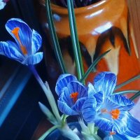Маленькая балконная весна )) :: Ирина Сивовол