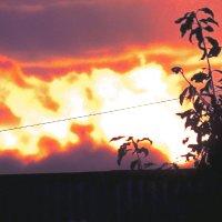 закат :: petyxov петухов
