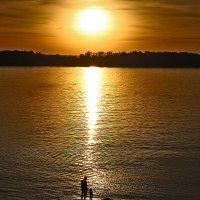 В далеком, теплом море живет печальная рыба-солнце. :: Alex Oz