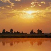 рыжая вода :: sergej-smv