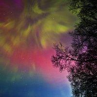 Аурора бореалис. 17,03,2015 :: Dmitri_Krzhechkovski Кржечковски