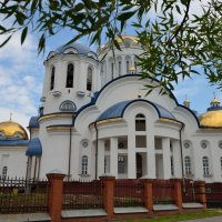 Храм всех московских святых в Бибирево :: Наталья К*******
