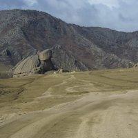 Большая степь, большие звери-2 :: Алексей Чеботарёв
