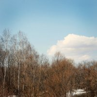 весенний пейзаж :: Tatyana Belova