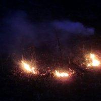 Огни пала сухой травы... :: Владимир Павлов