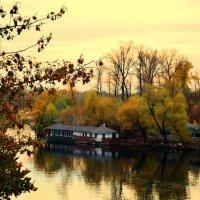 Это осень...вроде бы и неплохо...лишь бы не в душе... :: Валентина Данилова