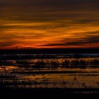Закат над заливными лугами :: Дмитрий Потапкин