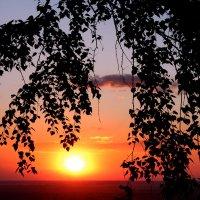 Полыхало солнце на закате... :: Наталья Юрова