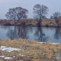 на реке Нерль :: Сергей Цветков