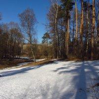 IMG_3830 - Просто март :: Андрей Лукьянов