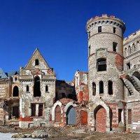 Замок Храповицкого в Муромцеве. :: Александр Назаров