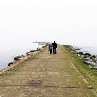 По дороге к облакам. Часть ll. лучше смотреть с http://fotokto.ru/id89728/photo#photo2011341 :: Peiper ///