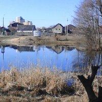 Утро на озере :: Сергей Гвоздев