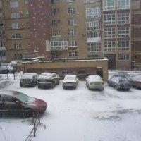Зима вернулась :: Mary Коллар