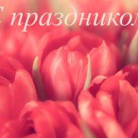 открытка :: Ирина Корнеева