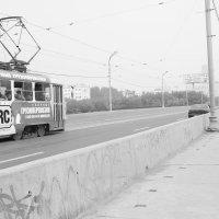 Трамвай :: Мария Степанова