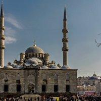 Istanbul 2015 7 :: Arturs Ancans