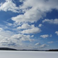 Какое небо голубое... :: Галина Полина