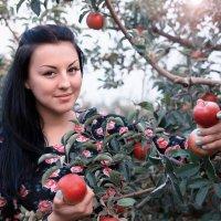 Яблочное настроение )) :: Райская птица Бородина