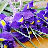 Квіти :: Степан Карачко