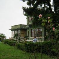 Абхазия.Дача Сталина И.В. :: Любовь Иванова