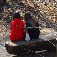 Девушки и ВЕСНА Фото №5 :: Владимир Бровко