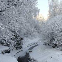 Зима :: Larisa Simonenkova
