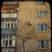 """Между..."" :: Катерина Чебышева"