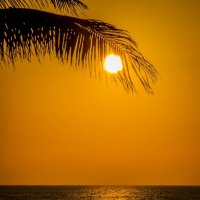 Тропический закат :: Elena Ignatova