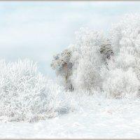Зимняя... :: Евгений Никифоров