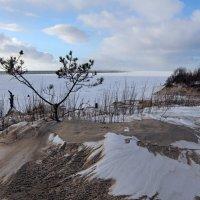 Северодвинск. Весна. Белое море. Вид с дюны :: Владимир Шибинский