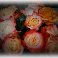 Необыкновенные розы :: Svetlana27
