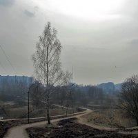 В тумане :: Yuriy V