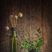 Зелёная бутылка :: Ольга Мальцева