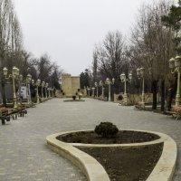 В парке :: Александр Черный