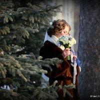 и куда жених делся и фотограф пропал :: Олег Лукьянов