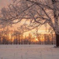 зимняя :: Михаил Корнилов