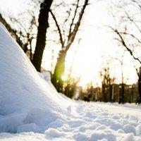 январский снег :: Олеся Семенова